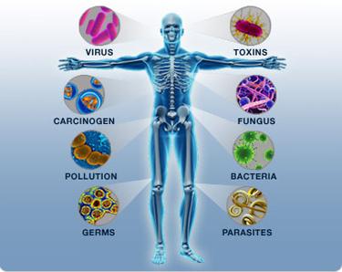 Immunityguy